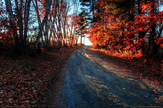 Old Country Road in Maine
