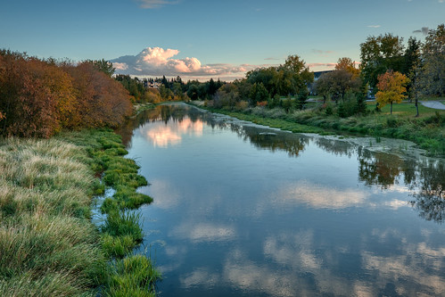 autumn fall water river tree nature grass reflection outdoors sky landscape plant evening noperson outdoor waterway flora cloud bodyofwater bank bushes leaf wetland sunset view placid scenic green lake pond aurorahdr
