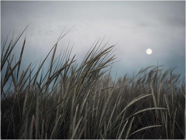 Moon and haze.....