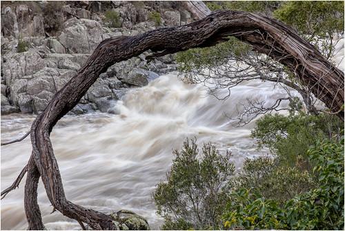 river launceston australia australien landscape water waterwaves longexposure canoneos5dmarkiv ef2470f28liiusm tasmanien tasmania tree