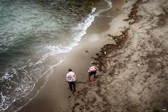 Buscando en la playa