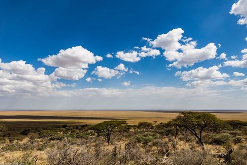 Serengeti_17sep18_00_campia nesfarsita | by Valentin Groza