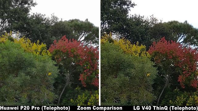 45033275682 9e9184ddb3 z - LG V40 ThinQ Camera Review - For the Content Creators