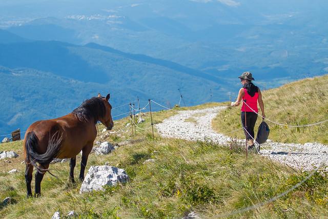 Walking on the mountain. Camminando in montagna.