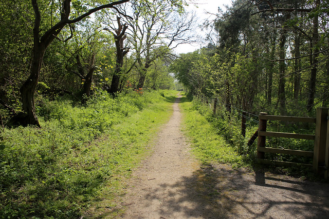Cycle path to Skegness