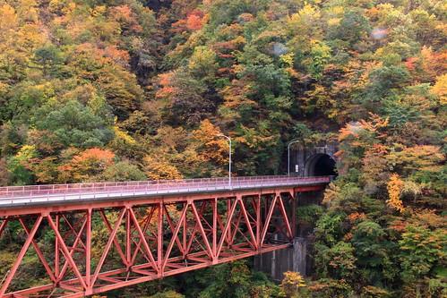 autumn autumnleaves autumncolours autumncolors fall fallcolors fallenleaves tree bridge red natural 岩手県 久慈市 長内渓流 forest mountain
