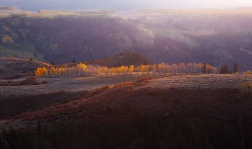 telluride colorado lastdollarroad fallfoliage sunset canon6d canonef24105mmf4l