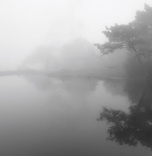 mist waterreflections reflections bw blackandwhite pond wachusettmountainstatereservation mountwachusett foggy fog