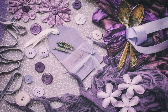 297/365: Shades of purple