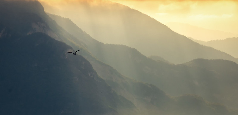 Mist over Chablais Alps