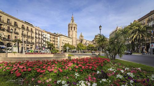 Plaza de la Reina. Valencia