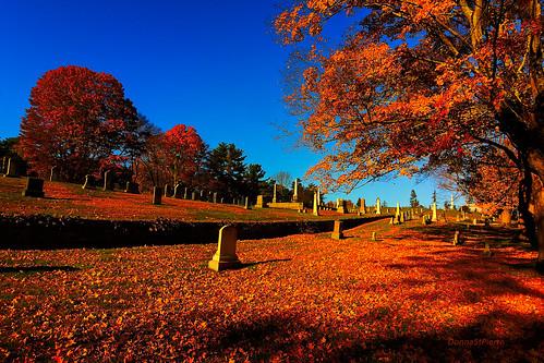 autumn autumn2018 landscape graveyard trees color andover massachusetts newenglandtravel travel weather cool crisp visitmassachusetts photography photographer landscapephotography light shadows blue newengland newenglandautumn leaves