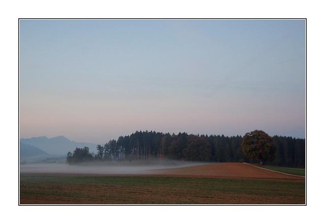 Un automne rampant / Oron - Suisse