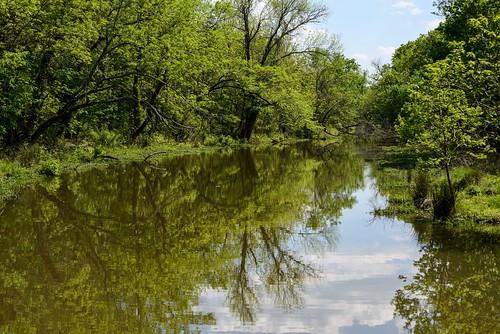d610 tamron70300vc oxleynaturecenter nature nikviveza creek water reflections trees nikoutputsharpener