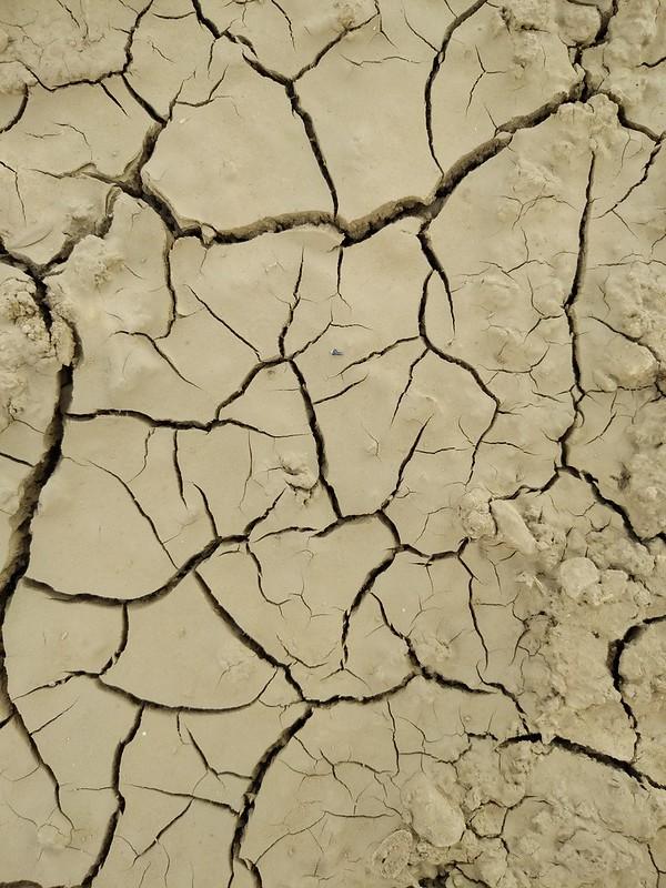 Ground texture #08