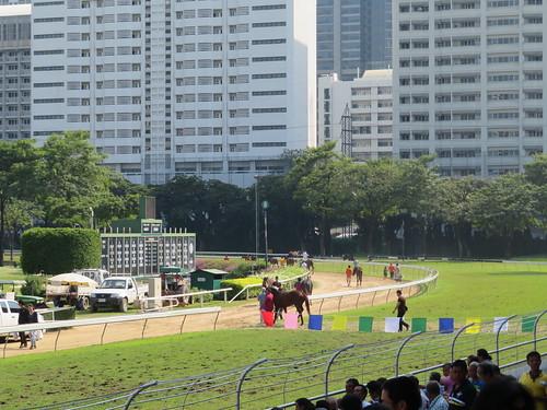ロイヤルバンコクスポーツクラブで引き上げる馬たち