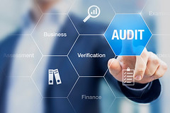 Increasing Audit Efficiency and Frequency Through Audit Management