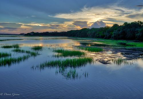 hiltonhead landscape marsh southcarolina sunset water