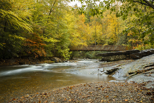 autumn fall yellow leaves season outdoors creek stream river water bridge structure iron steel transportation westernnorthcarolina northcarolina hayesville claycounty nationalpark forest