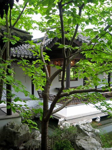 Chinese Garden at Snug Harbour 2 | by Vix_B