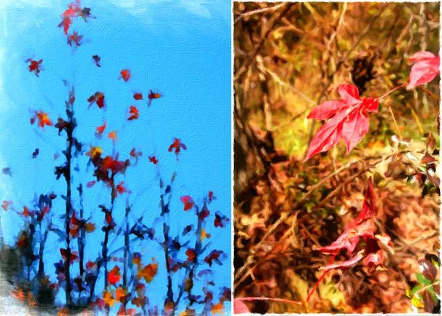 autumn diptychh
