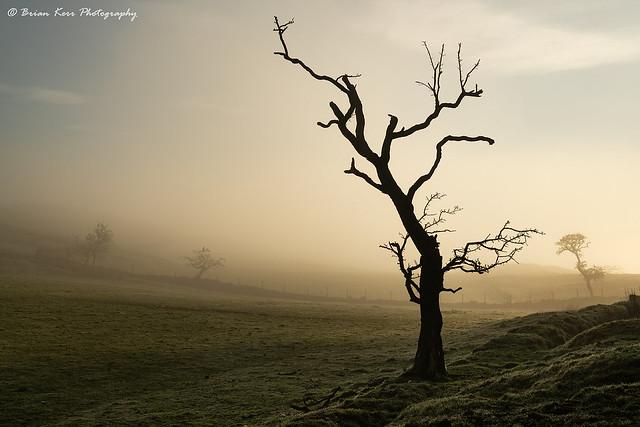 Mist At Walltown Crags