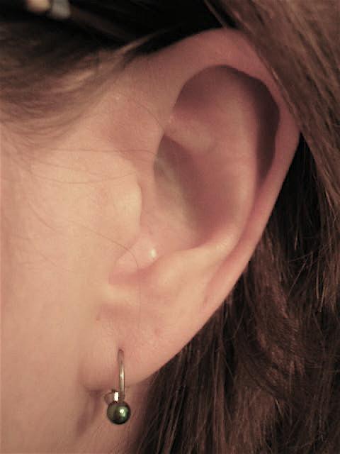 EAR for TWTME Scavenger hunt