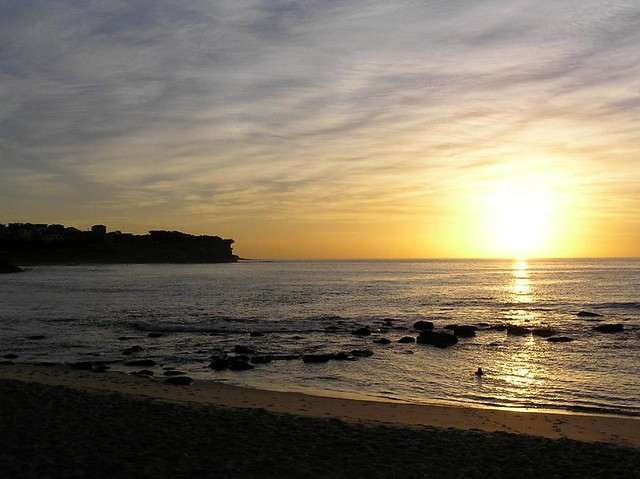Northern Bronte Silhouette