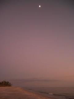 beachmoon-purple | by nucof