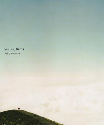 seeing birds