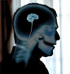 pea brain dubya