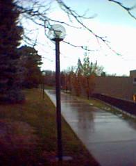 Rain trumps snow
