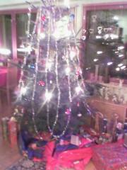 Airi's tree