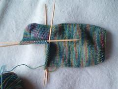 Koigu Sock