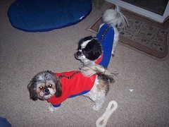 Nicky and Alex in their matching coats
