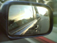 [Moblog] Frosty enjoying the car ride