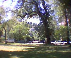 Portland State Uni Lawn View