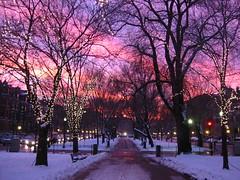 Boston Sunset | by bettlebrox