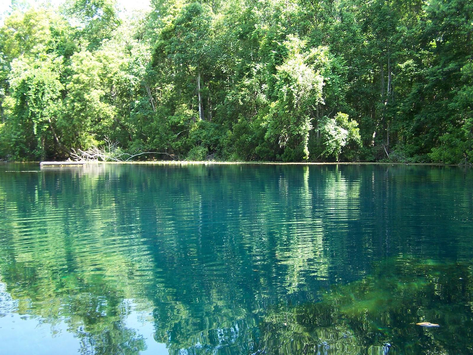 Big Blue Spring (Jefferson County, FL)