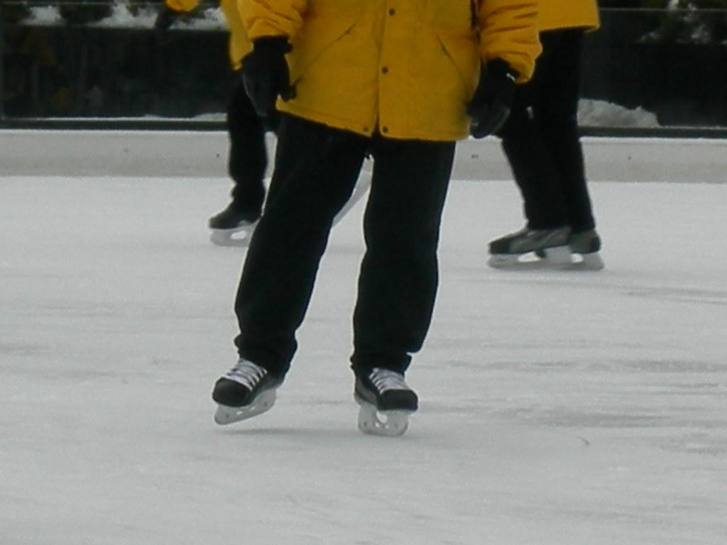 skate guard