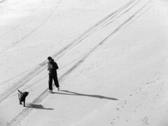 The Loneliness of the Long Distance Runner | by Gerard Stolk ( vers la Pentecôte)