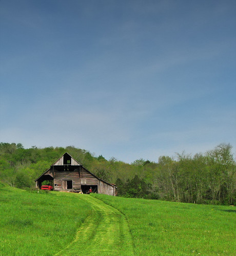 green grass barn nashville farm tennessee country leipersfork canons5