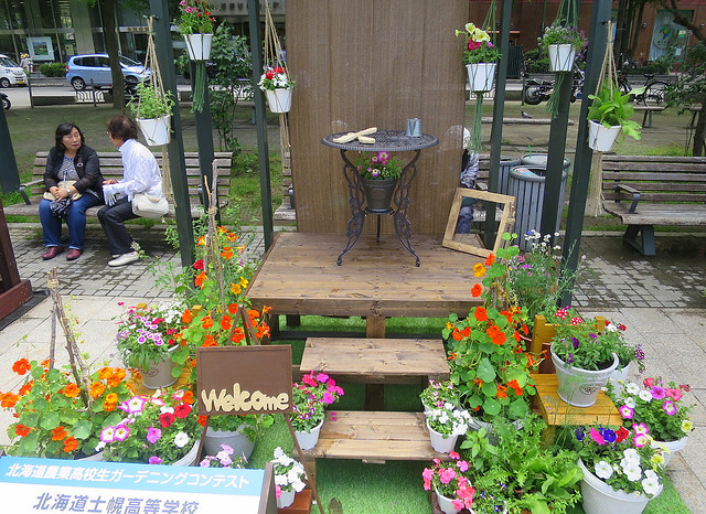 Small gardens display in Sapporo
