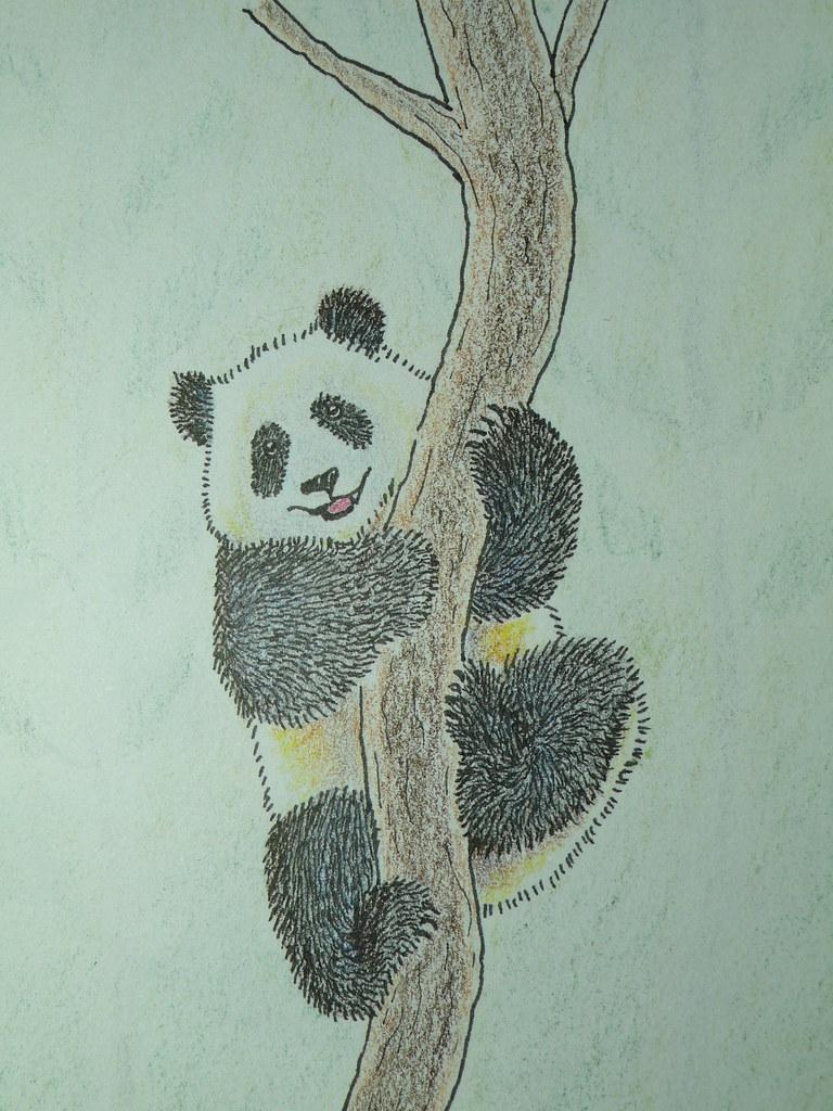 Smiling panda color pencil drawing by poyee lam0321