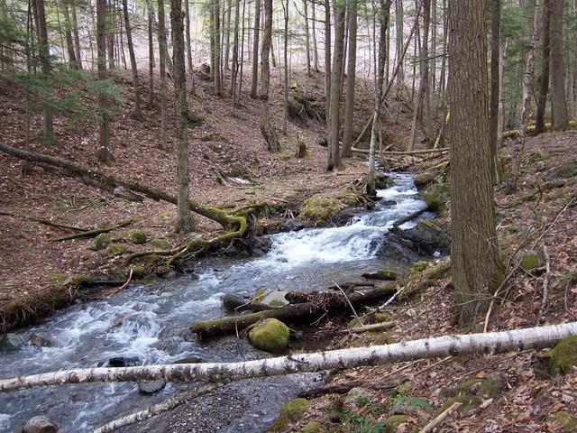 0:17:04 (49%): vermont hiking fairlee glenfallsbrook