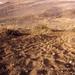 Subida y Bajada a la Montaña de El Socorro y sus efectos