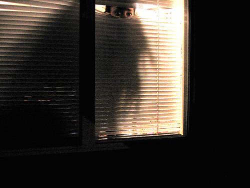 Day 254 ...I always feel like somebody's watching me | by bandita