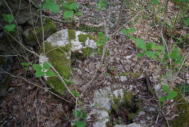 Grist Stone at Flat Creek Falls, Overton Co, TN