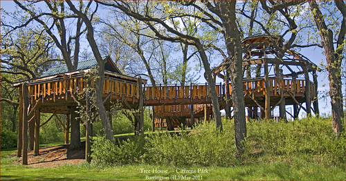 The Pepper Family Accessible Tree House -- Citizens Park Barrington (IL) May 2011   by Ron Cogswell