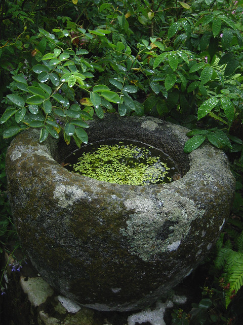 Broughton House garden 4